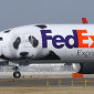 Have Your Aircraft Standout with Stylish Airplane Wraps